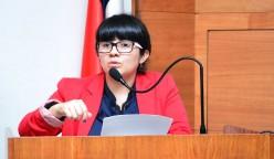 En su charla, Ángela Bustamante comentó la experiencia del posicionamiento de soyconcepcion.cl.