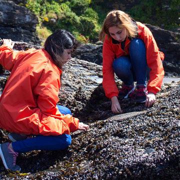 Facultad de Ciencias realiza diferentes actividades para conmemorar el Día del Medio Ambiente