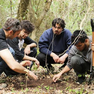 Alumnos de Química Ambiental investigan impacto de la vegetación en propiedades de suelo