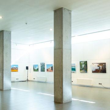 Muestra reúne talento pictórico de artistas penquistas y antofagastinos
