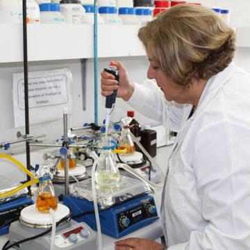 Proyecto busca evaluar el valor nutricional y actividad biológica de algas en el Biobío