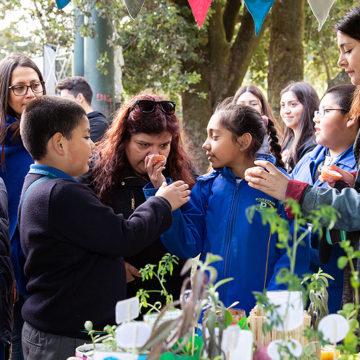Feria cultural y con sentido ecológico reunió a la comunidad penquista en el Parque Ecuador