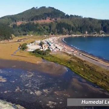 Proyecto FIC incorpora innovación en medición de variables ambientales en humedales costeros