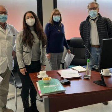 Docentes del Campo Clínico de Chillán recibieron capacitación para reforzar enseñanza virtual